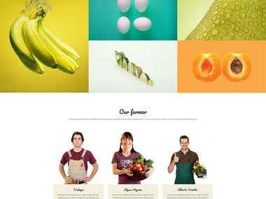 Organic Food Store