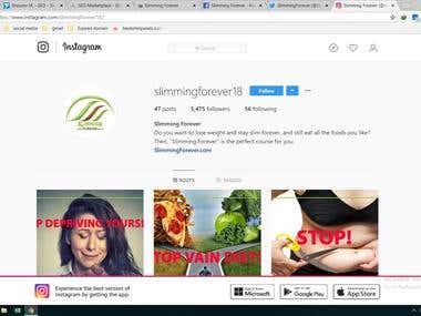 social media marketing (Instagram marketing)