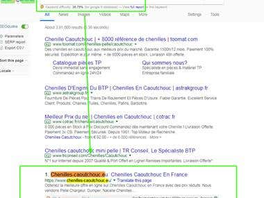 #1 Ranking on Google.fr