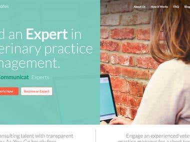 Website Development - Online Marketplace
