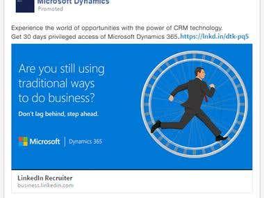 Microsoft Catalog