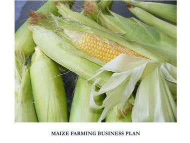 Business plan Seed Farming