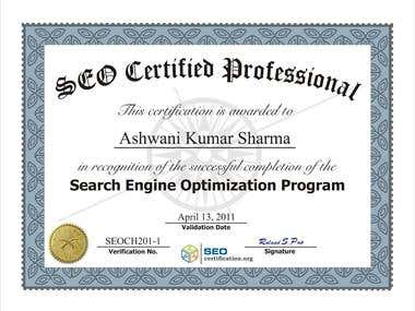 SEO Certified Professional (2011)