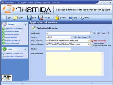Build Protect System for Windows Software