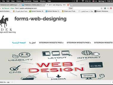 Web Designer & Developer(Wordpress )