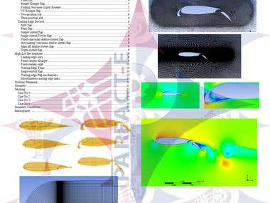 Multielement Airfoil CFD