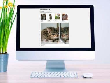 Coding and design website