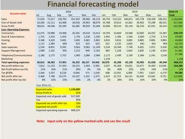 Financial forecasting and analysis