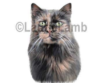 Digital Painting of Cat
