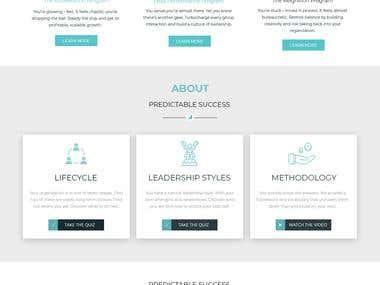 Business consulting Website Design