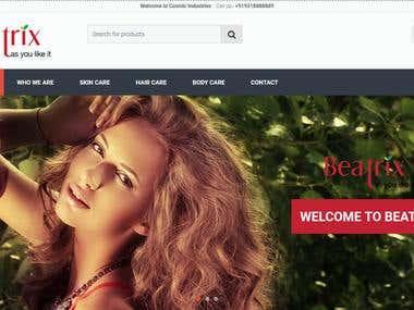 WordPress/Wocommerce Development