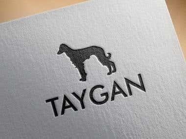 Taygan Logo