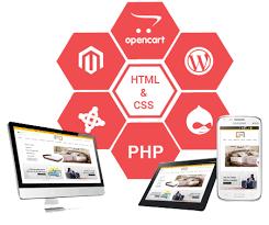 Responsive Website Develop