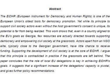 Policy Paper: EU Democracy Promotion (English)