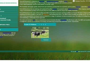 Emerald Biosciences Website