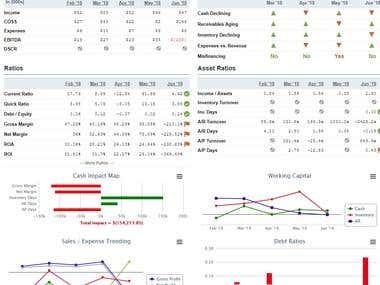 Analysis: Ratios, Industry Average Comparison, Risks, etc