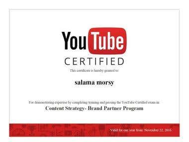 Content Strategy - Brand Partner Program