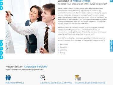 Netpro System