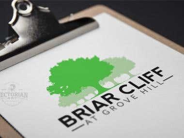 Logo Design: BRIAR CLIFF