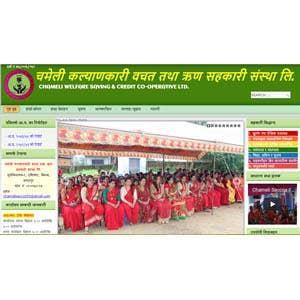 Co-operative Website