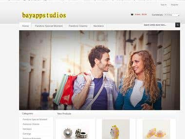 Ecommerce Website (Wordpress)