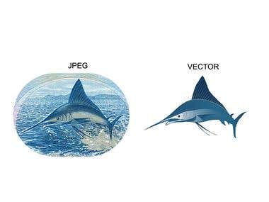 JPEG TO VECTOR CONVERSION