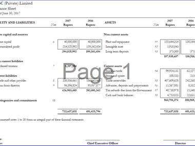 Balance Sheet (Statement of Financial Position)