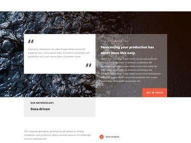 Petroleum Consulting Website