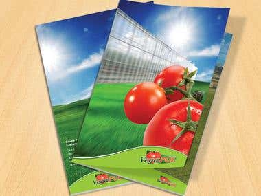 Catalog & Brochure