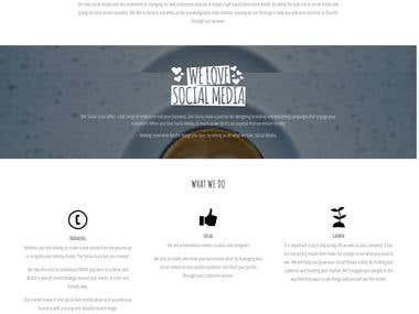 Website Design and Blog Development - thesocialguru.com.au