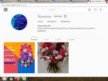 Instagram Business Profile Creation and Management