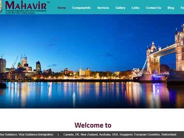 Mahavir Overseas and Career Consultants