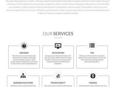 Finance Company Website design