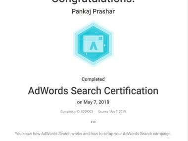 Google Search Certificate