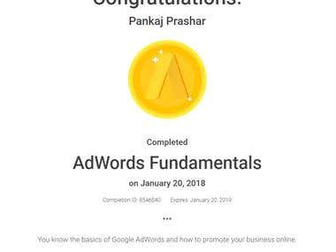 Google Fundamental Certificate