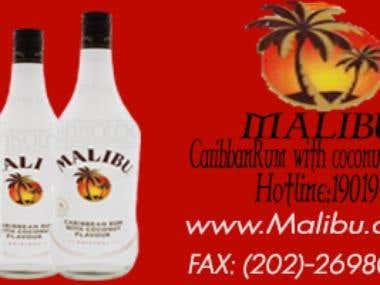 Malibou project