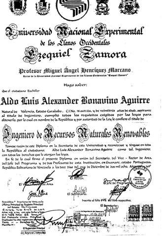 TITULO INGENIERO RNR AMBIENTAL
