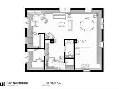Home Renovation 3D Plan Options