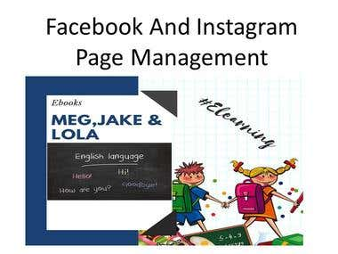 Management of Facebook and Instagram Business pages