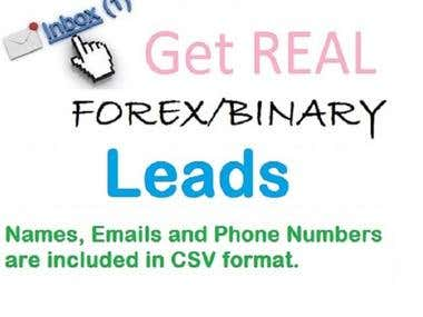 I Will Provide You Updated 1k Forex Leads With Phone Numbers