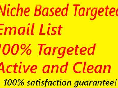 Niche Based Targeted Email List