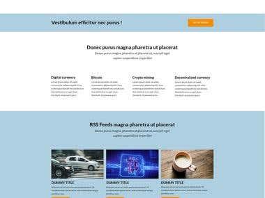 Plan B - Wordpress Website (Design and Development)