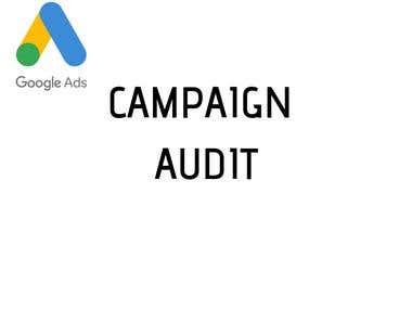 Campaign Audit