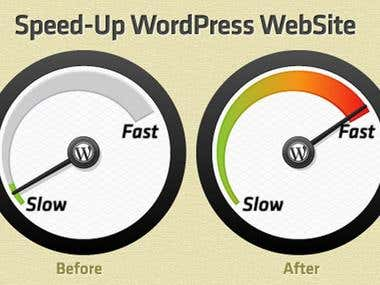 Optimize Wordpress Speed And Page Speed Up Optimization
