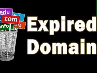 I Will Find Expired Domains With High Metrics For PBN Networ