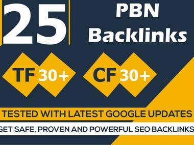 25 High Quality Homepage PBN Links