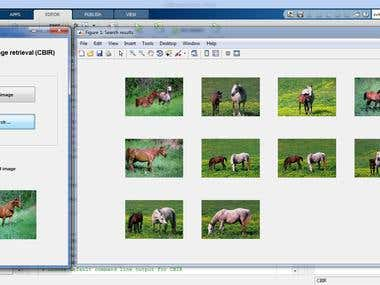 Content Based Image Retrieval (MATLAB)
