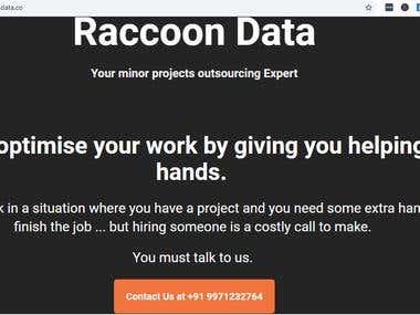 Website content writing - Raccoondata.co