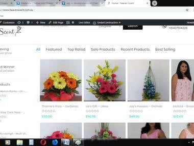 Wordpress Web site Mega Shop Theme