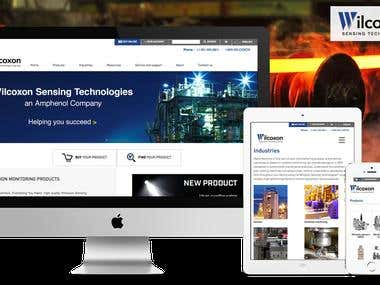 Wilcoxon Sensing Technologies